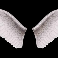 Decal dán tường Tranh cánh thiên thần 3D