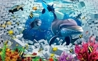 Decal dán tường Cá heo 3d