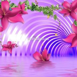 Con đường hoa ly hồng màu tím