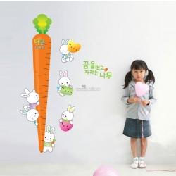 Decal dán tường Thước đo củ cà rốt 2