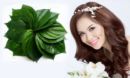 https://stc.bindo.vn//files/meo-lam-trang-rang-bang-la-trau-khong-cuc-hay-.jpg