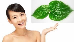 https://stc.bindo.vn//files/meo-lam-trang-rang-bang-la-trau-khong-cuc-hay-2.jpg