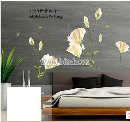 Decal dán tường Hoa anh thảo trắng