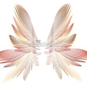 Cánh bướm thiên thần