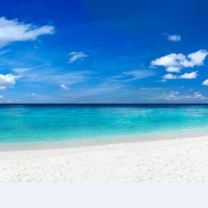 Tranh bãi biển thiên đường nhiệt đới với cát trắng