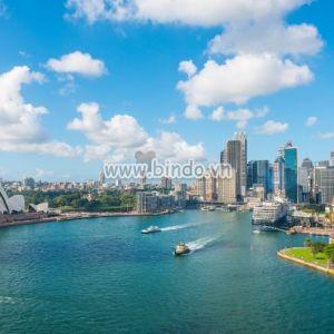 Tranh Circular Quay và Nhà hát Opera Sydney, NSW, Australia