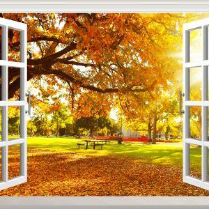 Tranh cửa sổ mùa thu