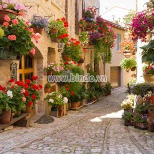 Tranh Alley với hoa
