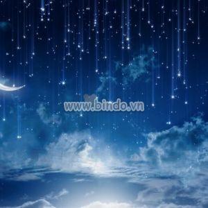 Tranh Moon cái nhìn thoáng qua của bầu trời đêm