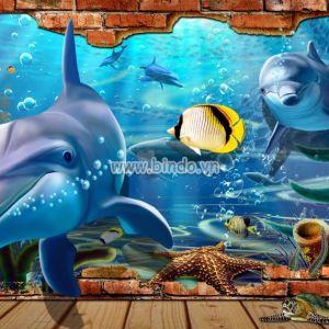 Cá heo và đại dương khổ lớn