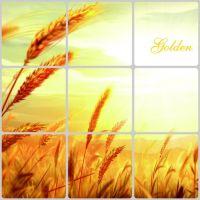 Decal dán tường Dán bếp lúa vàng