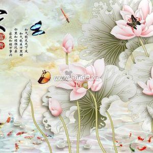 Đàn cá chép và hoa sen