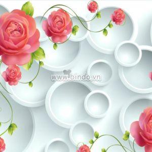 Hoa hồng 3D và vòng tròn