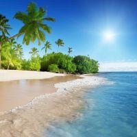Tranh cảnh biển Caribê