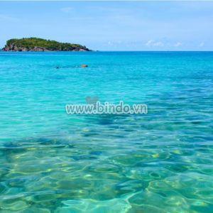 Tranh biển nhiệt đới bình dị trong ngày nắng