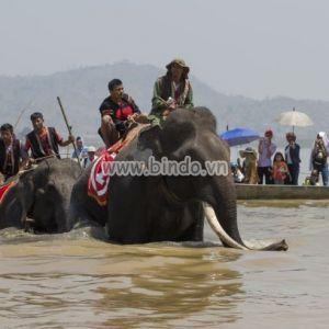 Tranh cảnh Dak Lak , Vietnam