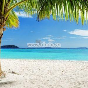 Tranh bãi biển Philippines