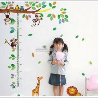 Decal dán tường Thước đo vườn thú 3