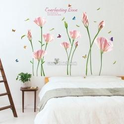 Decal dán tường Hoa anh thảo hồng trắng