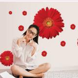 Decal dán tường Hoa cúc đồng tiền đỏ