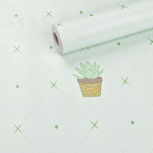 Giấy decal cuộn Chậu cây xanh